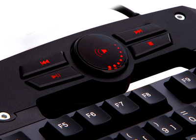 Everest DLK-5110 Siyah Usb Makrolu Gaming Q Multimedia Klavye